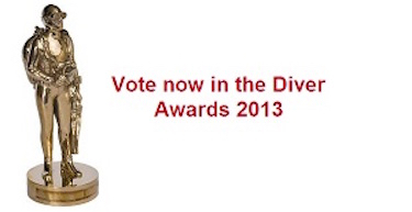 Vote for us in the DIVER Awards 2013!!