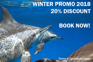Winter Promo 2018! Save 20%! ***Deadline 30th November 2017***
