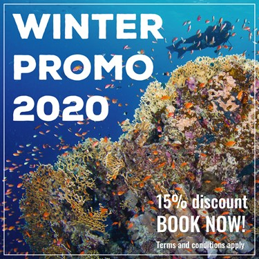 Winter Promo 2020 - Offer Extended!