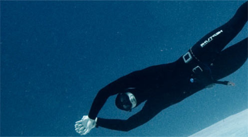 Red Sea Diving Safari Free Diving Workshops